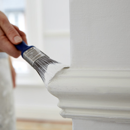 Questa Painting Company