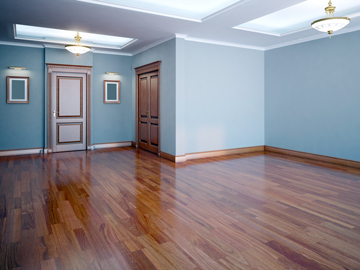 Agency Interior Painting